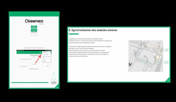 Extraits du guide d'utilisation de BlueEO pour paramétrer les feux sonores